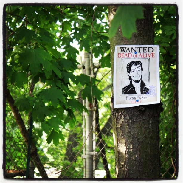 Flynn Rider Wanted Posters